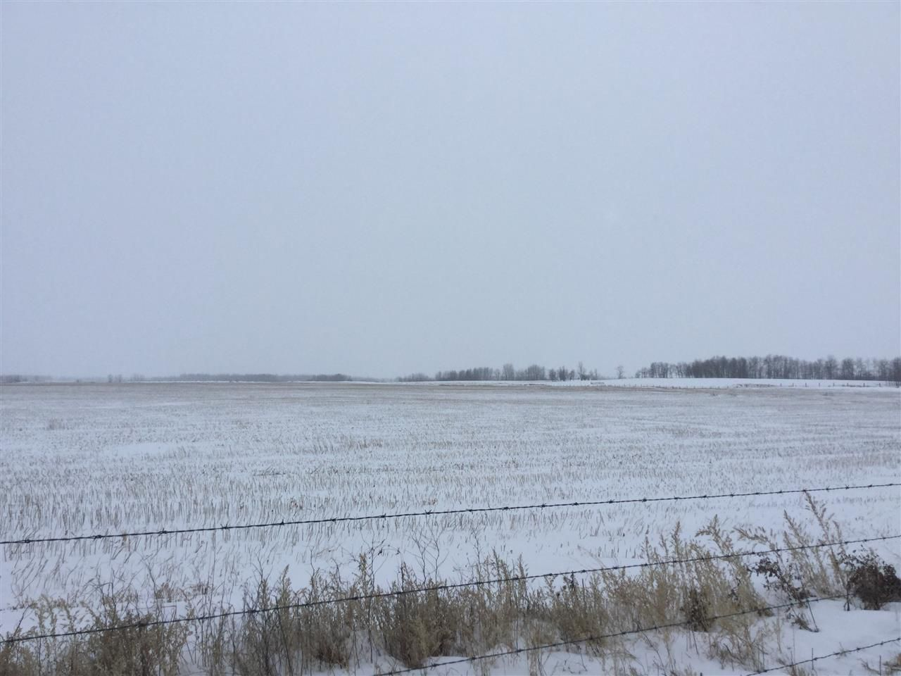 Main Photo: 60314 Rge Rd 252: Rural Westlock County Rural Land/Vacant Lot for sale : MLS®# E4152097