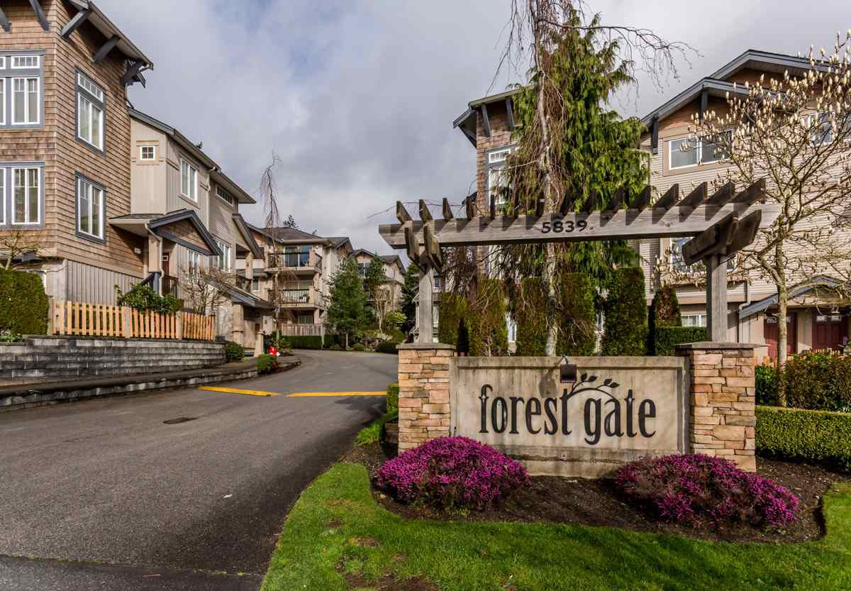"Main Photo: 17 5839 PANORAMA Drive in Surrey: Sullivan Station Townhouse for sale in ""Forest Gate"" : MLS®# R2046887"