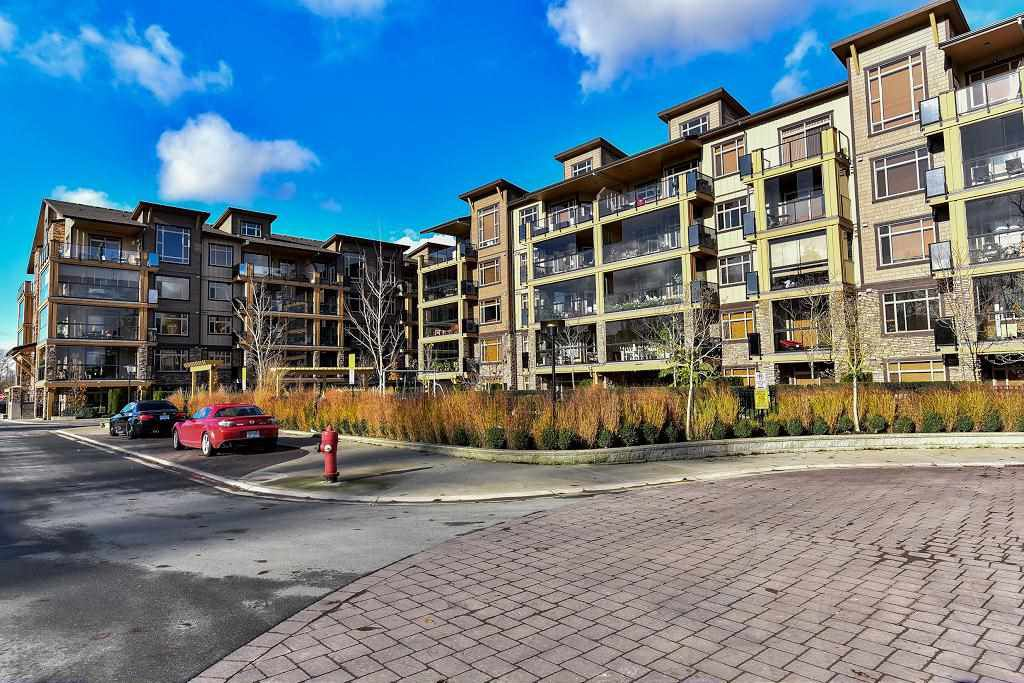 """Main Photo: 362 8258 207A Street in Langley: Willoughby Heights Condo for sale in """"YORKSON CREEK"""" : MLS®# R2144555"""