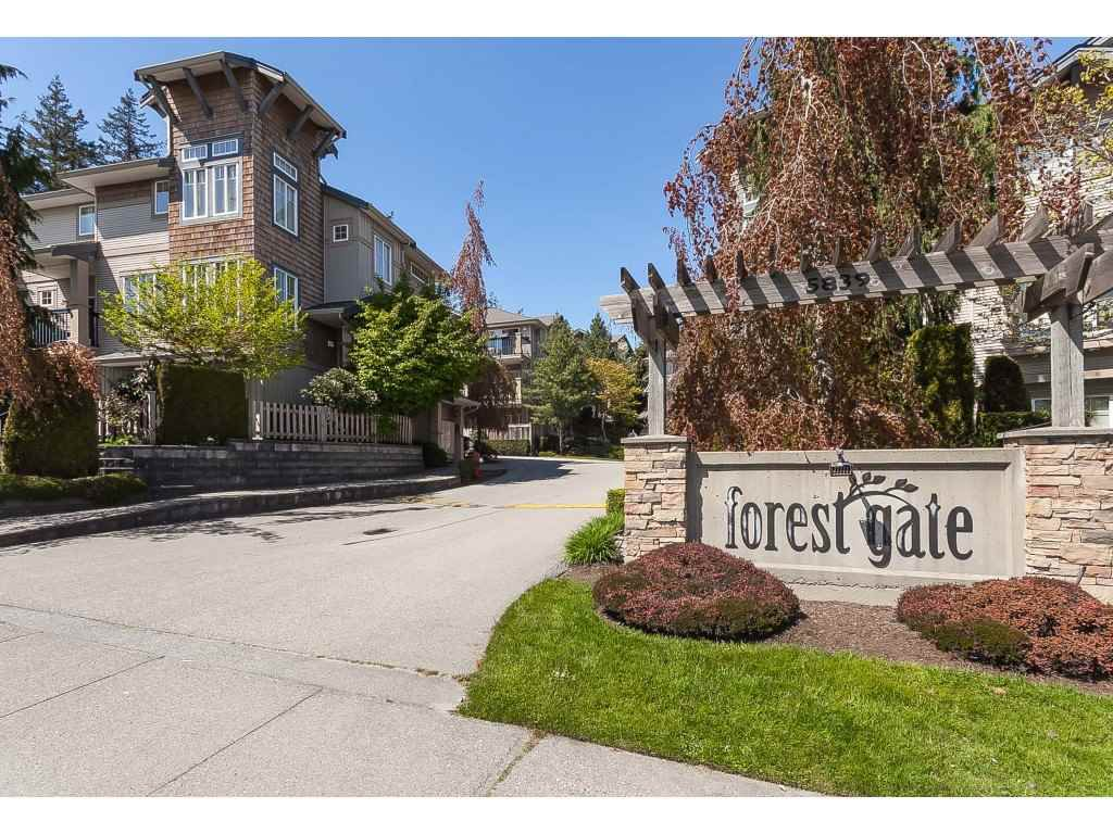 """Main Photo: 13 5839 PANORAMA Drive in Surrey: Sullivan Station Townhouse for sale in """"Forest Gate"""" : MLS®# R2376657"""