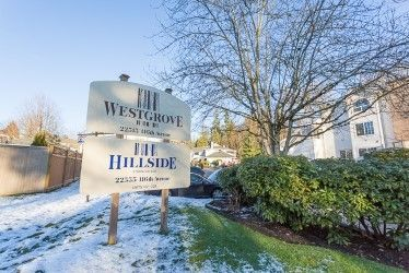 """Main Photo: 204 22515 116 Avenue in Maple Ridge: East Central Townhouse for sale in """"FRASERVIEW VILLAGE"""" : MLS®# R2229278"""