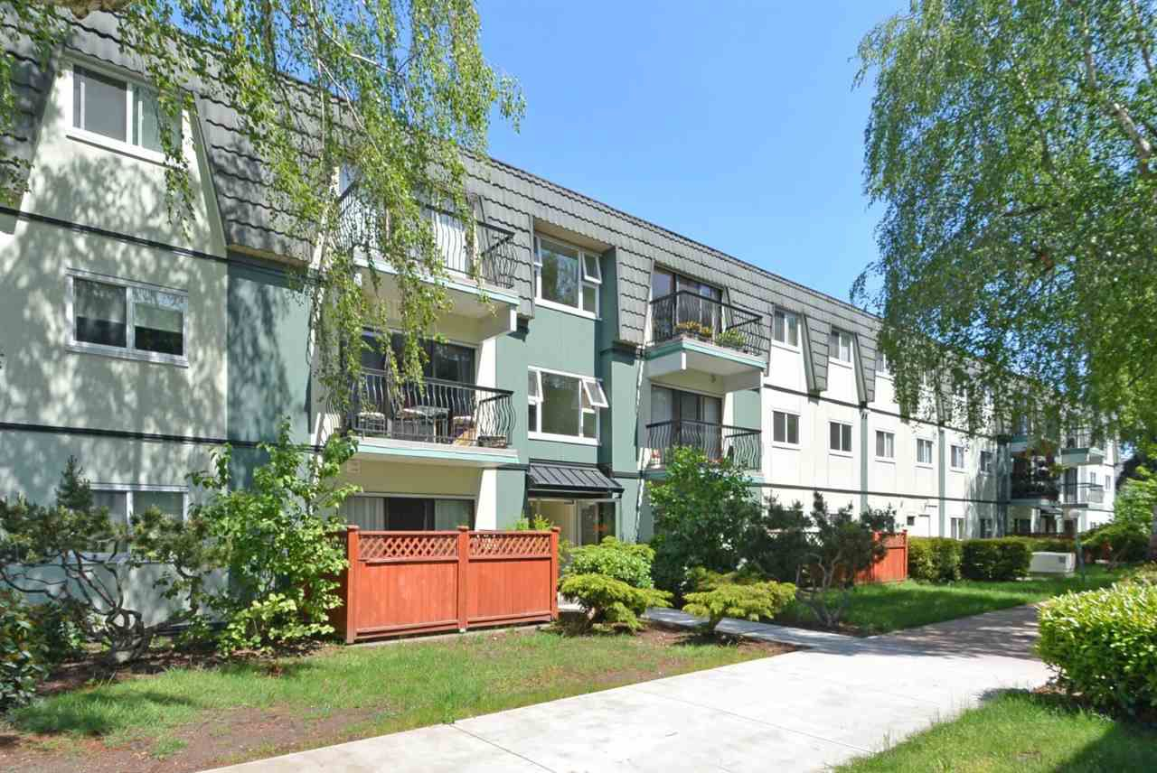 """Main Photo: 366 8151 RYAN Road in Richmond: South Arm Condo for sale in """"MAYFAIR COURT"""" : MLS®# R2369702"""