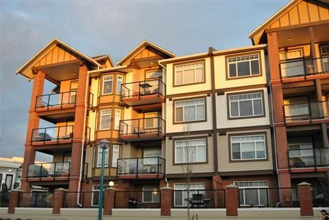 """Main Photo: 307 5650 201A Street in Langley: Langley City Condo for sale in """"PADDINGTON STATION"""" : MLS®# R2104166"""