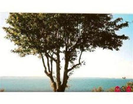 Main Photo: 1889 OCEAN PARK RD: Home for sale (Crescent Bch Ocean Pk.)  : MLS®#  F2614217