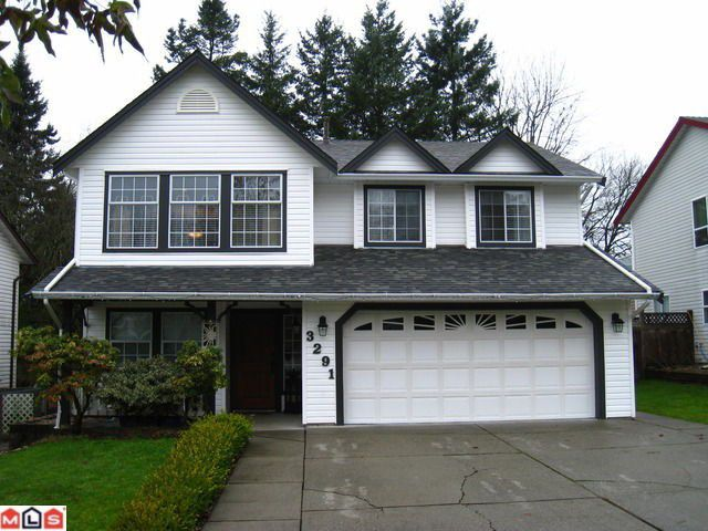Main Photo: 3291 275A Street in Langley: Aldergrove Langley House for sale : MLS®# F1129548