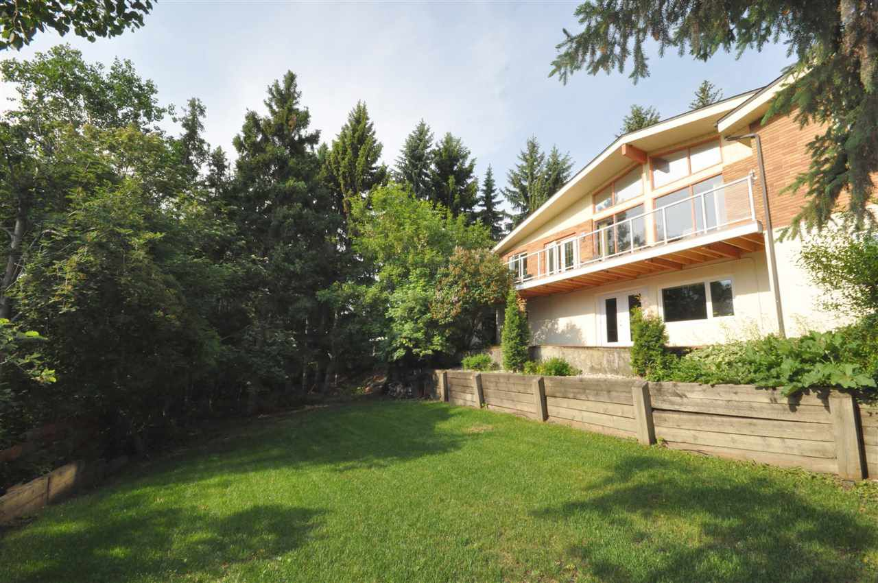 Photo 28: Photos: 95 VALLEYVIEW Crescent in Edmonton: Zone 10 House for sale : MLS®# E4151478