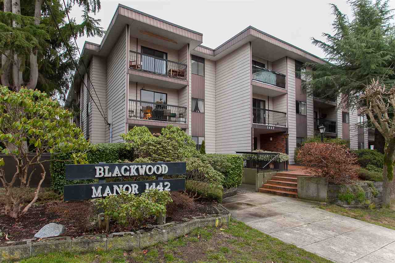 Main Photo: 102 1442 BLACKWOOD STREET: White Rock Condo for sale (South Surrey White Rock)  : MLS®# R2232653