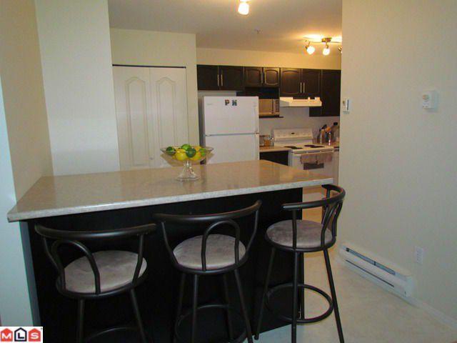 Photo 3: Photos: 414 2962 TRETHEWEY Street in Abbotsford: Abbotsford West Condo for sale : MLS®# F1122270