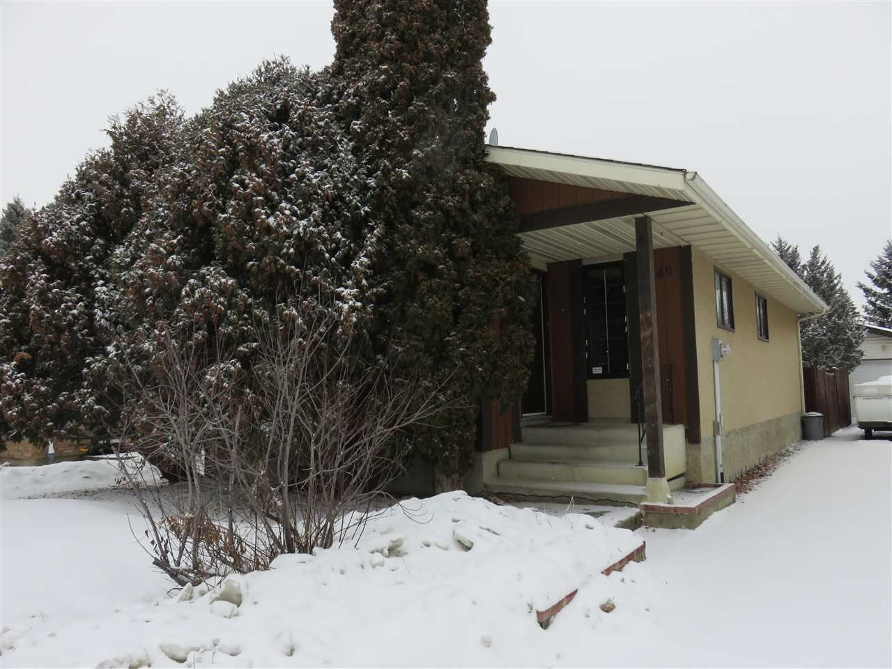 Main Photo: 1240 65 Street NW in Edmonton: Zone 29 House for sale : MLS®# E4143378