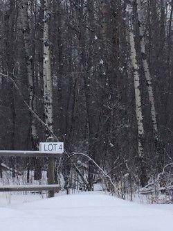Main Photo: 48062 RR 273: Rural Leduc County Rural Land/Vacant Lot for sale : MLS®# E4144194