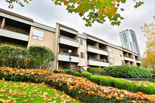 "Main Photo: 113 10221 133A Street in Surrey: Whalley Condo for sale in ""VILLAGE AT SURREY PLACE"" (North Surrey)  : MLS®# R2012710"