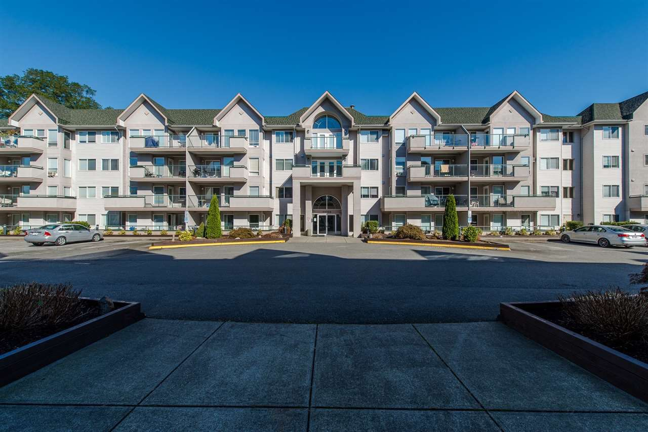 "Main Photo: 110 33738 KING Road in Abbotsford: Poplar Condo for sale in ""College Park"" : MLS®# R2149689"