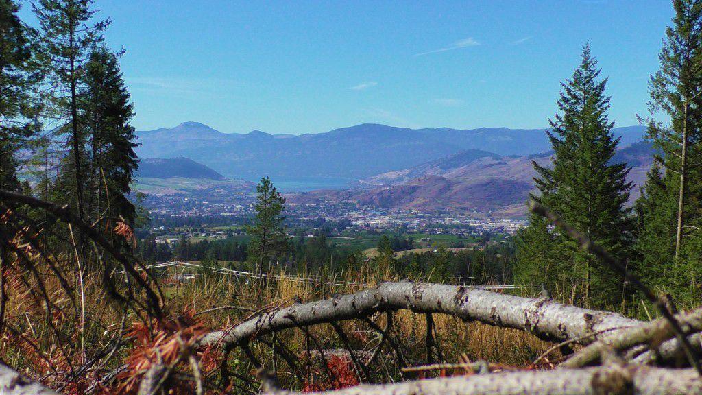 Main Photo: 6575 Dixon Dam Road in Vernon: South BX Vacant Land for sale (North Okanagan)  : MLS®# 10106215