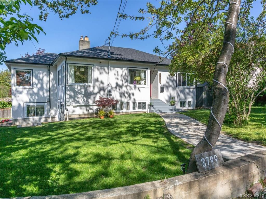 Main Photo: 3700 Winston Crescent in VICTORIA: SE Quadra Single Family Detached for sale (Saanich East)  : MLS®# 391319