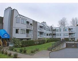 """Main Photo: 105 9584 MANCHESTER Drive in Burnaby: Cariboo Condo for sale in """"BROOKSIDE PARK"""" (Burnaby North)  : MLS®# R2245779"""