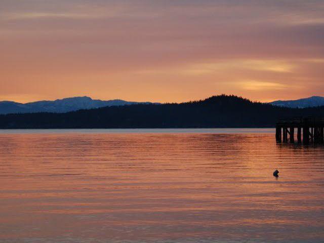 "Photo 17: Photos: LOT F REDROOFFS ROAD in Halfmoon Bay: Halfmn Bay Secret Cv Redroofs Land for sale in ""HALFMOON BAY"" (Sunshine Coast)  : MLS®# R2035709"