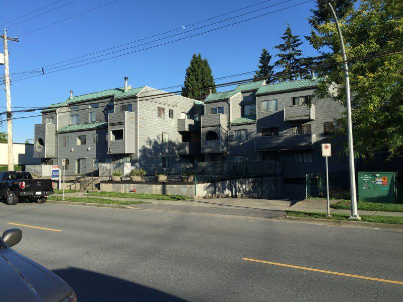 Main Photo: 309 1948 COQUITLAM Avenue in Port Coquitlam: Glenwood PQ Condo for sale : MLS®# R2079521
