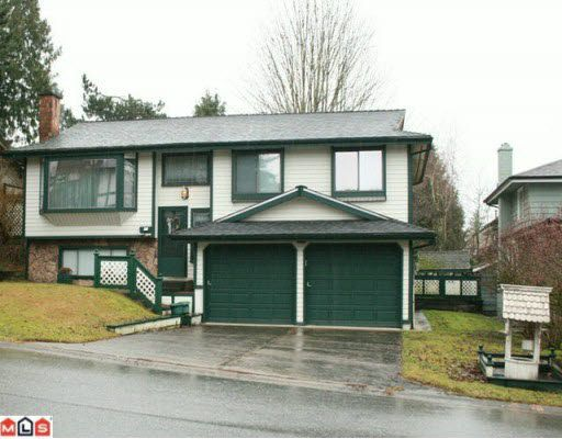 Main Photo: 5033 198B STREET in : Langley City House for sale (Langley)  : MLS®# F2928145
