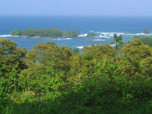 Main Photo:  in Bocas del Toro: Isla Bastimentos Home for sale (Bocas Del Toro)
