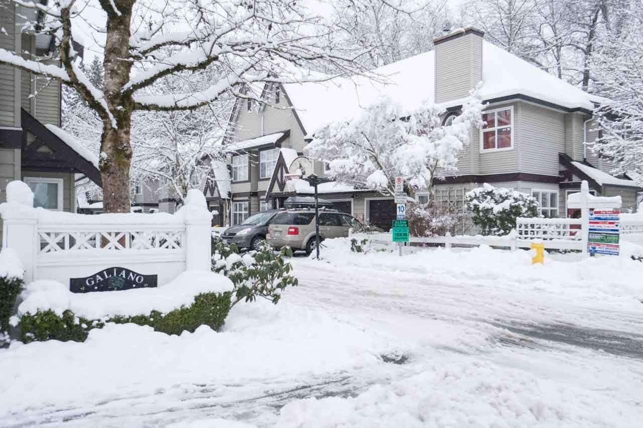 "Main Photo: 20 11757 236 Street in Maple Ridge: Cottonwood MR Townhouse for sale in ""GALIANO"" : MLS®# R2137053"