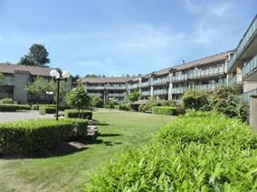 Main Photo: 307 4373 HALIFAX STREET in : Brentwood Park Condo for sale : MLS®# R2006814