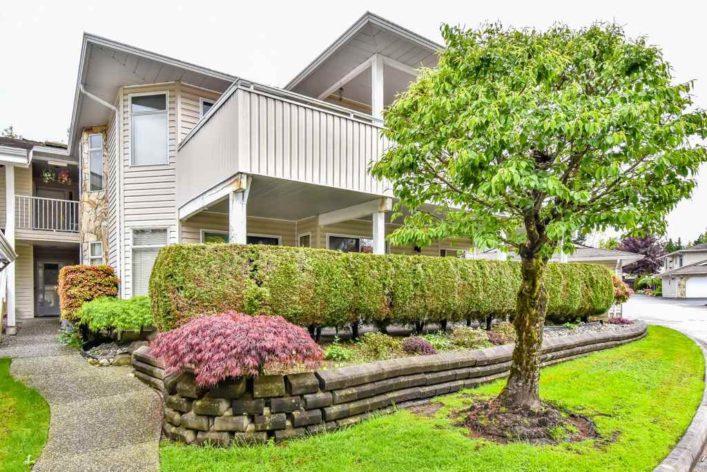 "Main Photo: 105 10584 153RD Street in Surrey: Guildford Townhouse for sale in ""Glenwood Village"" (North Surrey)  : MLS®# R2266261"