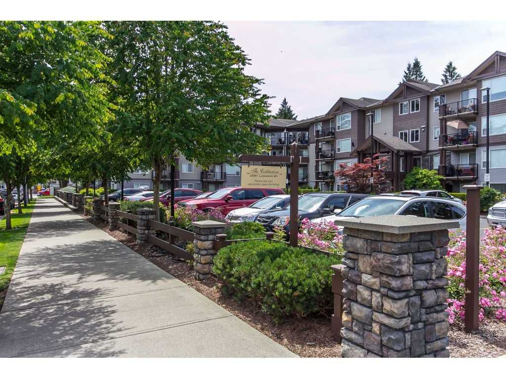 """Main Photo: 215 2581 LANGDON Street in Abbotsford: Abbotsford West Condo for sale in """"COBBLESTONE"""" : MLS®# R2090090"""