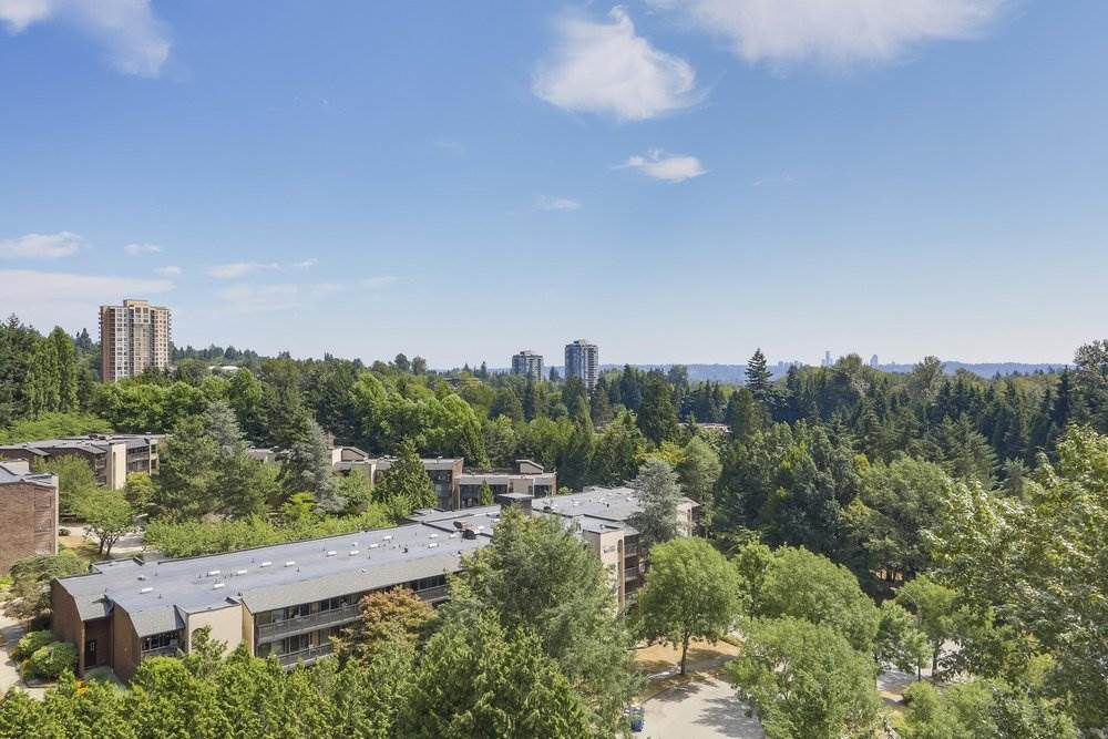 Main Photo: 903 9623 MANCHESTER Drive in Burnaby: Cariboo Condo for sale (Burnaby North)  : MLS®# R2310802