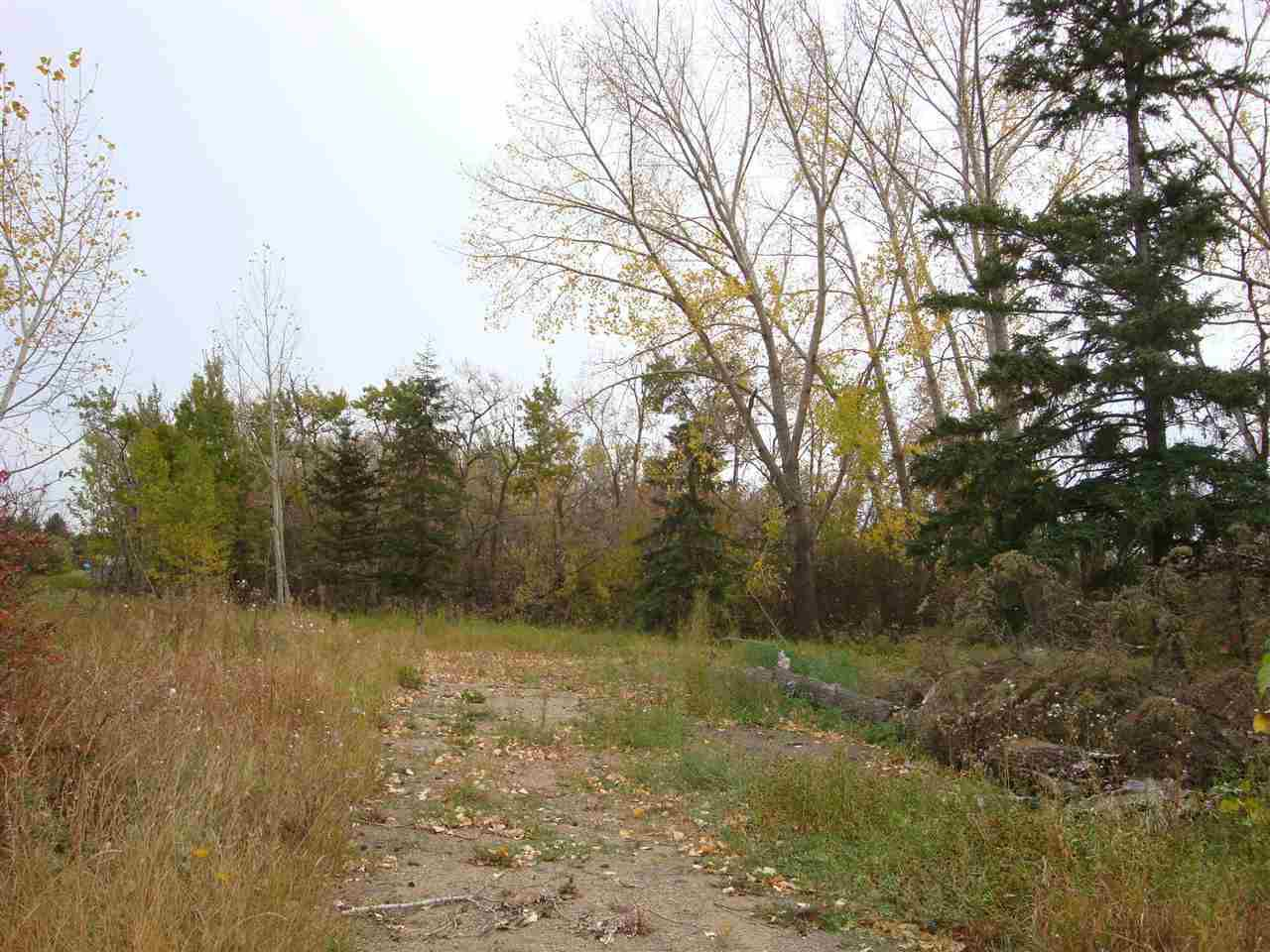 Main Photo: 4602 50 Street: Sedgewick Land Commercial for sale : MLS®# E4161417