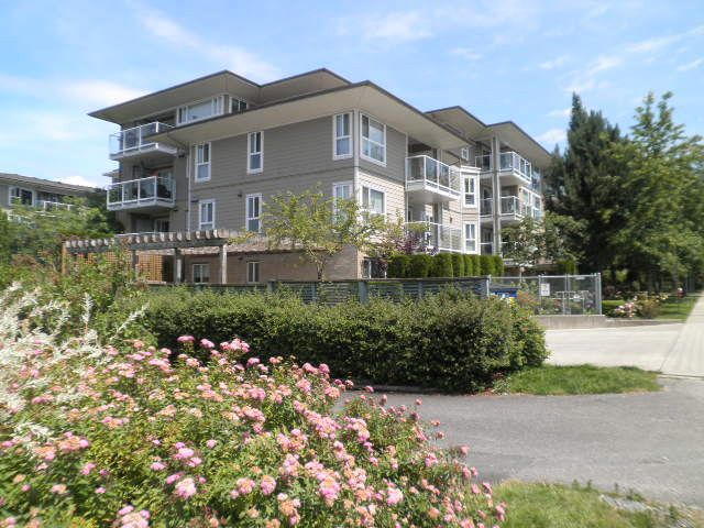 Main Photo: 206 22255 122 Avenue in Maple Ridge: West Central Condo for sale : MLS®# R2086650