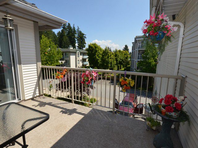 """Main Photo: 310 19122 122ND Avenue in Pitt Meadows: Central Meadows Condo for sale in """"EDGEWOOD MANOR"""" : MLS®# V1069854"""
