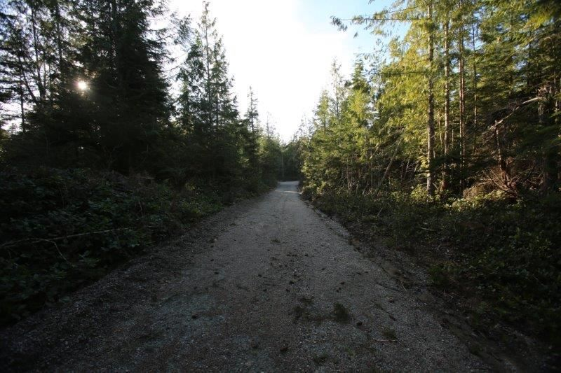 Photo 18: Photos: 5980 SECHELT INLET Road in Sechelt: Sechelt District House for sale (Sunshine Coast)  : MLS®# R2045230