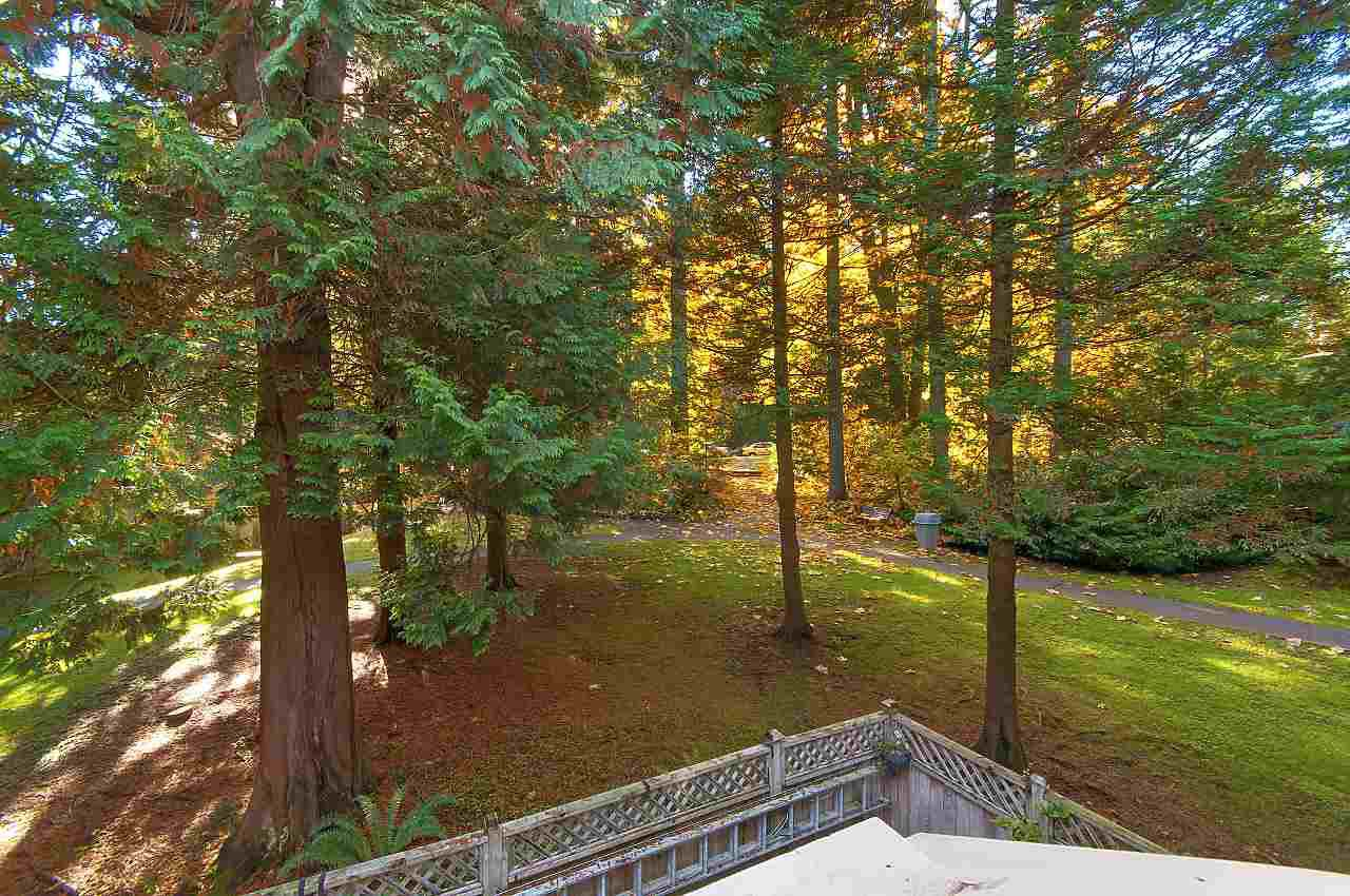 Such a tranquil area - 16 + acres of treed land for your kids to play.