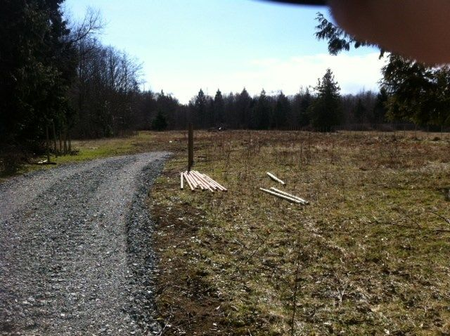 Photo 8: Photos: LOT 17 INGLIS Road in Gibsons: Gibsons & Area Home for sale (Sunshine Coast)  : MLS®# R2227805
