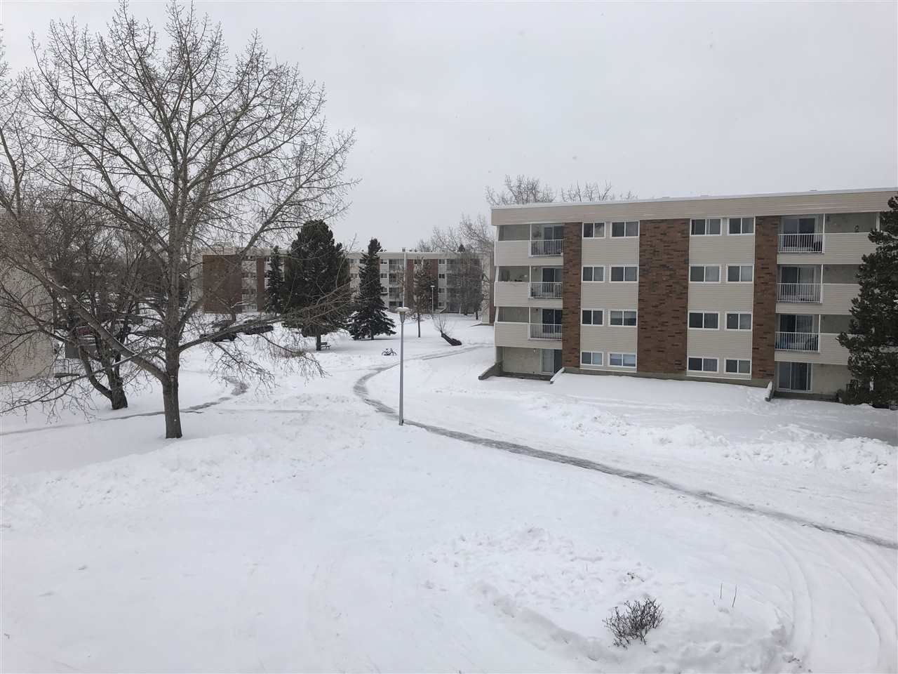 Main Photo: 42 11245 31 Avenue in Edmonton: Zone 16 Condo for sale : MLS®# E4144430