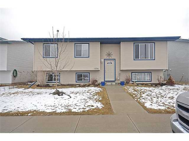 Main Photo: 1236 Strathcona Road: Strathmore Residential Detached Single Family for sale : MLS®# C3611249