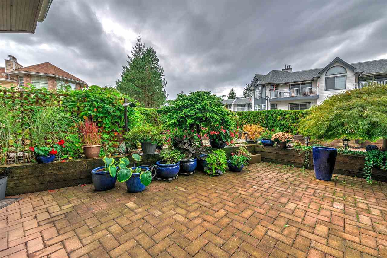 """Photo 17: Photos: 108 22611 116 Avenue in Maple Ridge: East Central Condo for sale in """"ROSEWOOD CT."""" : MLS®# R2310147"""