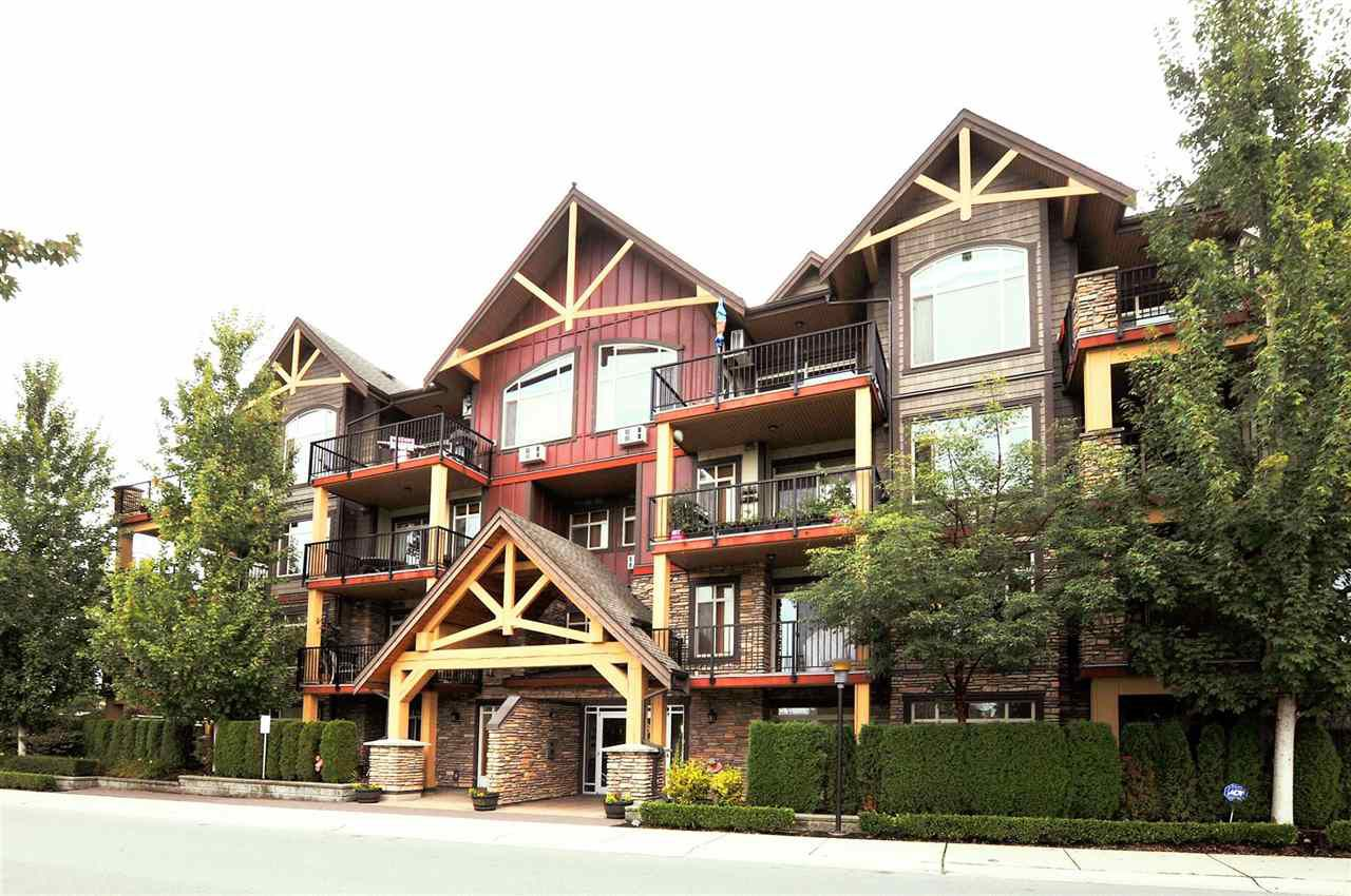 """Main Photo: 116 8328 207A Street in Langley: Willoughby Heights Condo for sale in """"WALNUT RIDGE 1 AT YORKSON CREEK"""" : MLS®# R2313770"""