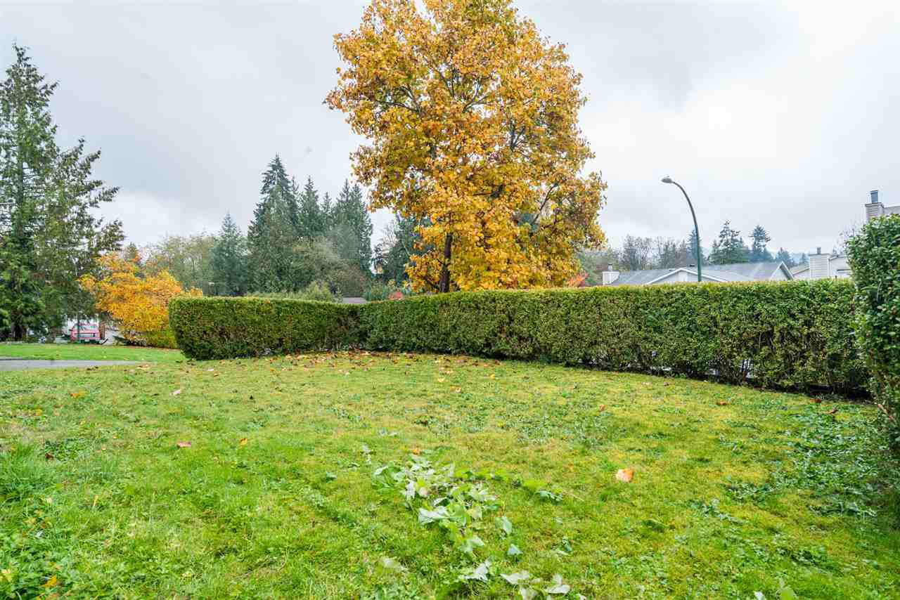 Main Photo: 24873 119 Avenue in Maple Ridge: Websters Corners House for sale : MLS®# R2342240
