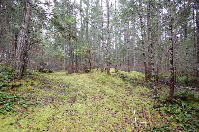 Photo 14: Photos: 2024 STEWART ROAD in NANOOSE BAY: House for sale : MLS®# 352119