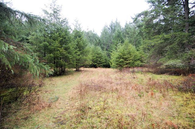 Photo 13: Photos: 2024 STEWART ROAD in NANOOSE BAY: House for sale : MLS®# 352119