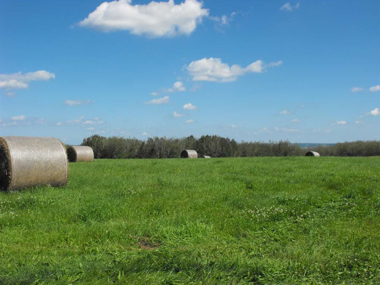 Main Photo: RR61 Twp Rd 562: Rural St. Paul County Rural Land/Vacant Lot for sale : MLS®# E4056770