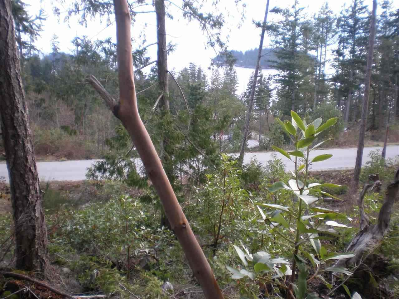 """Photo 8: Photos: LOT 105 JOHNSTON HEIGHTS Road in Pender Harbour: Pender Harbour Egmont Home for sale in """"DANIEL POINT"""" (Sunshine Coast)  : MLS®# R2244687"""