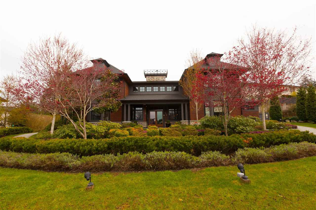 """Photo 68: Photos: 97 7938 209 Street in Langley: Willoughby Heights Townhouse for sale in """"Red Maple Park"""" : MLS®# R2260950"""