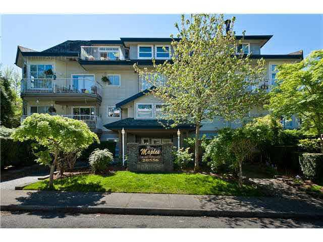 "Main Photo: 304 20556 113 Avenue in Maple Ridge: Southwest Maple Ridge Condo for sale in ""Southwest Maple Ridge"" : MLS®# R2337190"