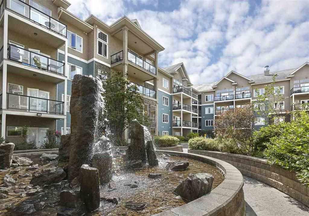 Main Photo: 216 10121 80 Avenue in Edmonton: Zone 17 Condo for sale : MLS®# E4147880