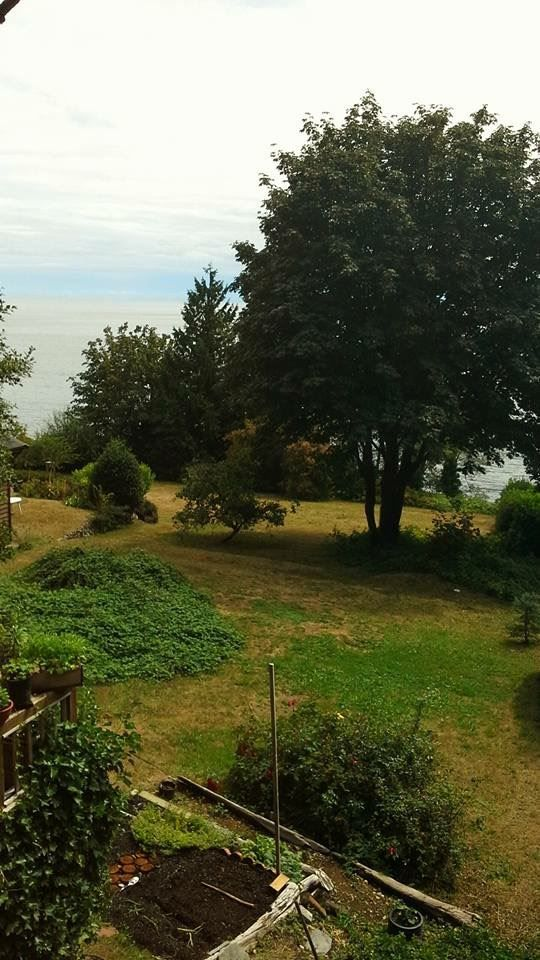 Photo 13: Photos: 2477 MILLINER Road: Roberts Creek House for sale (Sunshine Coast)  : MLS®# R2155266