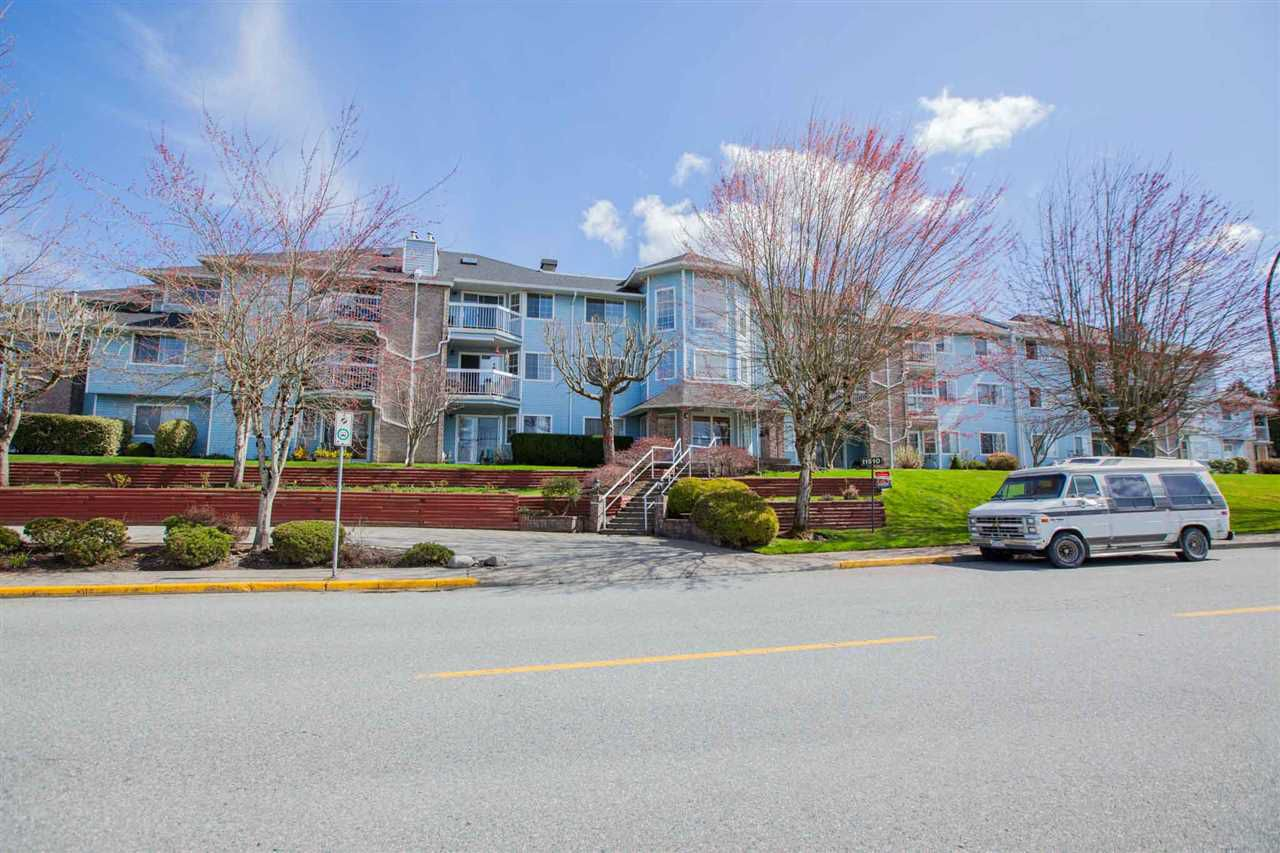 """Main Photo: 312 11510 225 Street in Maple Ridge: East Central Condo for sale in """"RIVERSIDE"""" : MLS®# R2355823"""