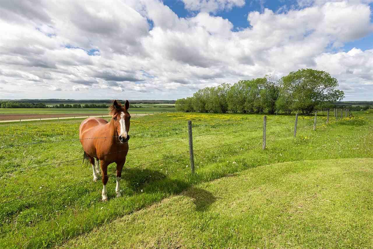 Main Photo: 40044 TWP 444: Rural Ponoka County House for sale : MLS®# E4161768