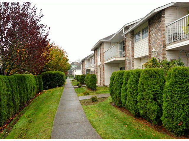 "Main Photo: 14 2919 TRAFALGAR Street in Abbotsford: Central Abbotsford Townhouse for sale in ""TRAFALGAR PARK"" : MLS®# F1324785"